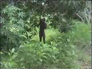 real african non-professional fuck on the tree part 2